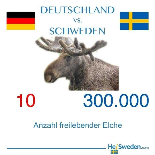 Anzahl Elche Deutschland und Schweden