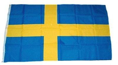 Schweden-Fahne-Student