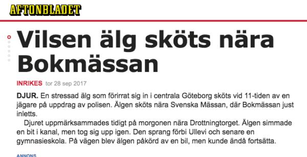 Moose shot in central Gothenburg