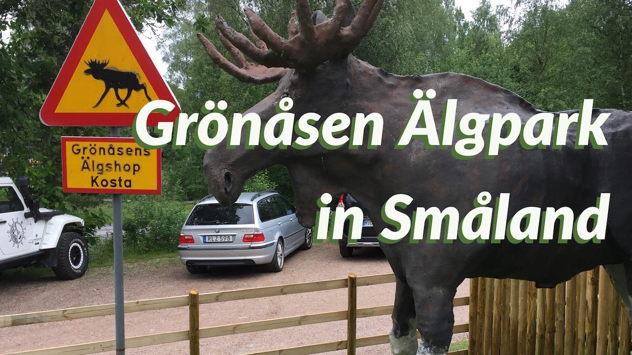 Grönåsen Elchpark moose park Sweden