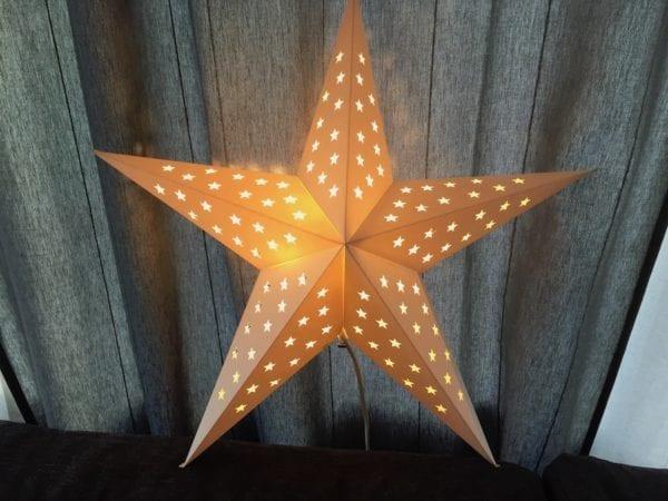 Weihnachtsstern Julstjärna aus Schweden
